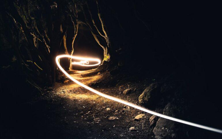 Stream of light in a dark forest